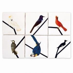 Bird Lines | Selected set