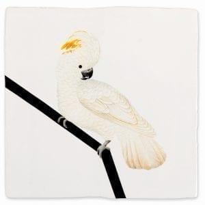 White Cockatoo | Tiles