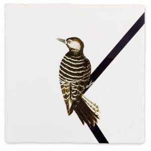 Woodpecker | Tiles